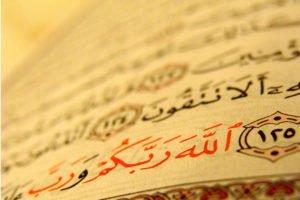 Почему мусульманам нельзя есть свинину