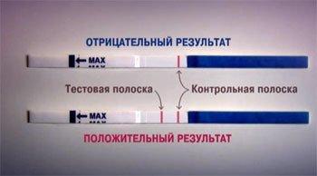 Тест для проверки наличия беременности
